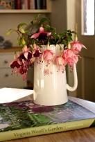 Fuchsia In A Vase