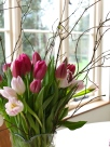 Pink Tulips with Twigs
