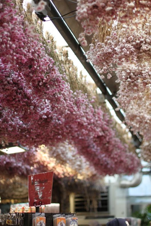 Dried-Flowers-Amsterdam