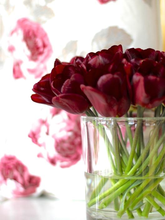 Tulip-Jan-Reus
