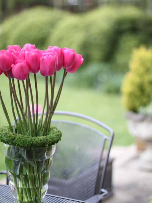 Tulip-Lilac-Time