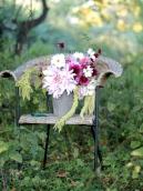 Dahlia-Bouquet