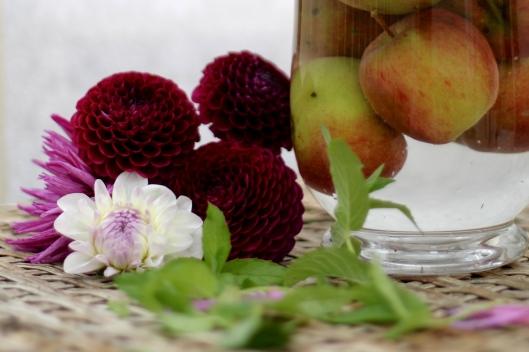 Dahlias-With-Apples