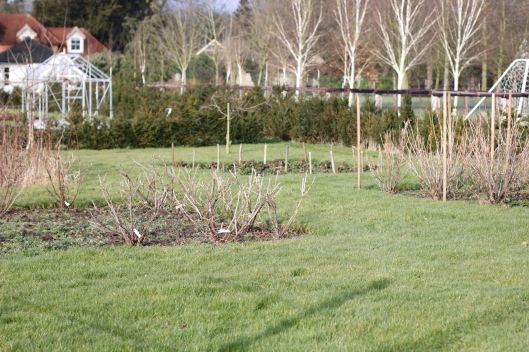 The-Cutting-Garden- February
