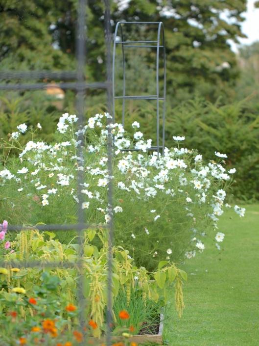 The-Cutting-Garden-September.